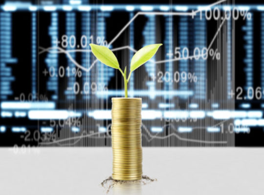 Gold coins stacked as a graph, with a plant growing from the tallest pile